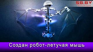Создан робот-летучая мышь