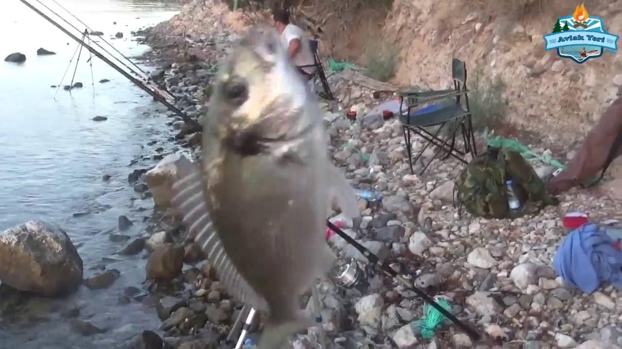 İki Kıyı Merası ve Balık Avı Güncemiz - 24 Temmuz 2016