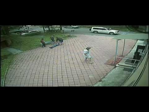 Хулиганское избиение врачей в ветклинике на Шишкина, 23