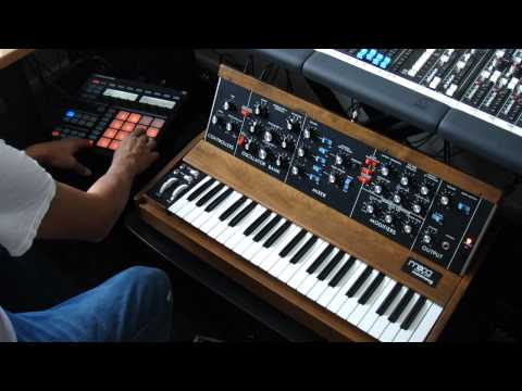 Minimoog D Old School House Beats with Maschine
