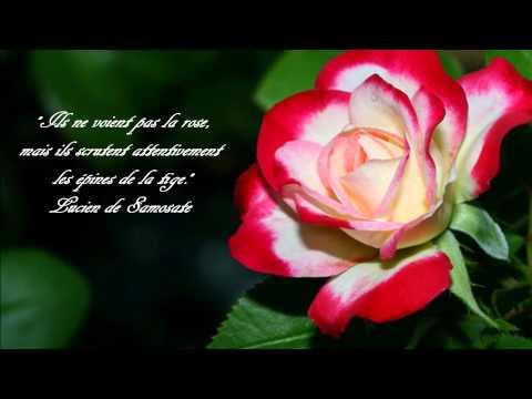 Femme que j'aime ~ Jean-Luc Lahayede YouTube · Durée:  3 minutes 41 secondes