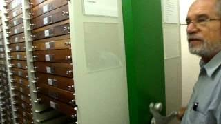 MUSEU DE ENTOMOLOGIA  UFPR - COLEÇÃO DE LEPIDOPTERA
