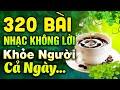 320 Bài Nhạc Không Lời Rumba Buổi Sáng Khỏe Người Cả Ngày | Hòa Tấu Rumba Không Lời | Nhạc Phòng Trà