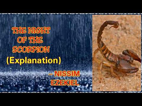Night of the scorpion by Nissim Ezekiel   in hindi   