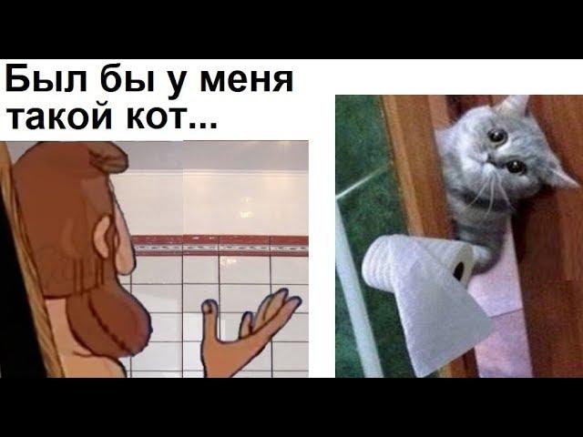 Лютые приколы. Был бы у меня такой кот...
