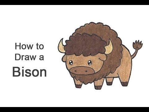 How To Draw A Bison / Buffalo (Cartoon)
