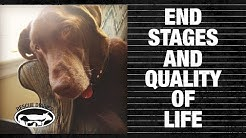 END STAGES & QUALITY OF LIFE