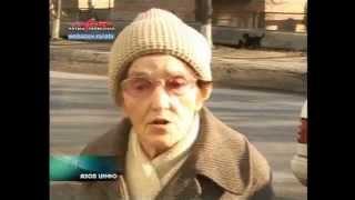 Азов-Инфо. Нападение бродячей собаки
