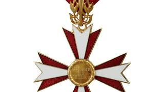 Austrian Cross of Honour for Science and Art, 1st class | Wikipedia audio article