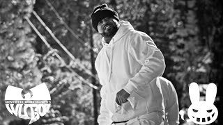 "Ghostface KIllah ""Starry Winters"" ft. Killah Priest (Dir. by Zodiak n Solo)"