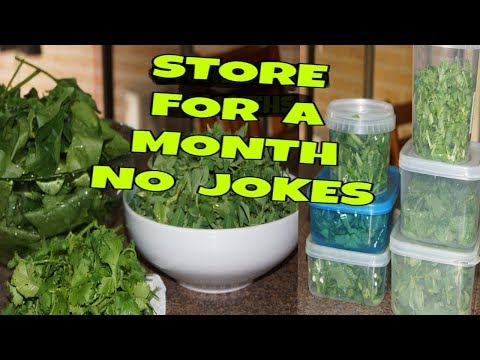 How to store leafy vegetables in the fridge |  KEEP (ALL LEAFY VEGETABLES ) FRESH