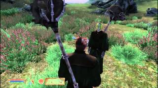 Oblivion how to make your own follower without mods!