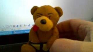 Swearing Toy Bear