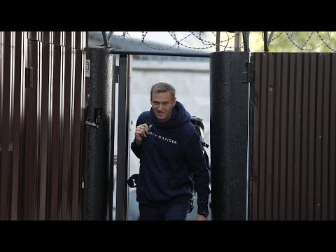 Russian opposition activist Alexei Navalny is released from prison