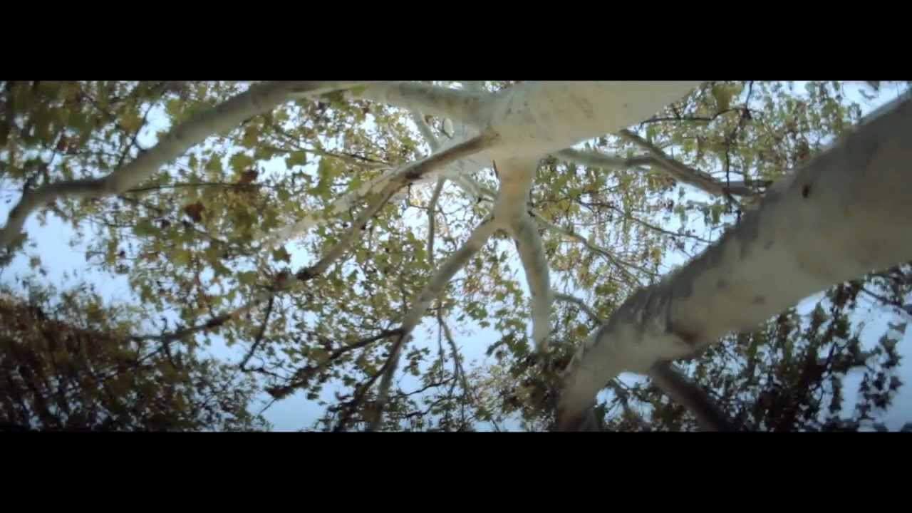 Carl Zeiss jena 28mm f2,8 + markII (test video)