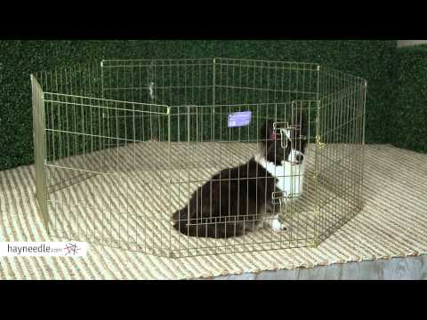 Midwest Gold Exercise Pen with Door - Product Review Video