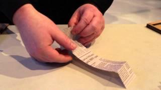 كيفية جعل Tumblewing Walkalong الطيارة