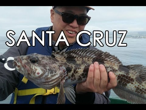 Fishing For Rockfish And Lingcod In Santa Cruz