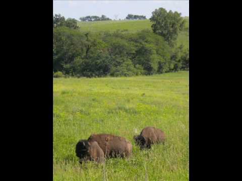 Neil Smith Wildlife Refuge - Prairie City, Iowa