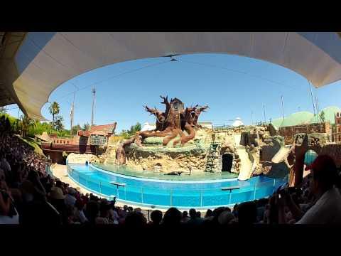 Seelöwen Show Zoo Marin Algarve / Portugal