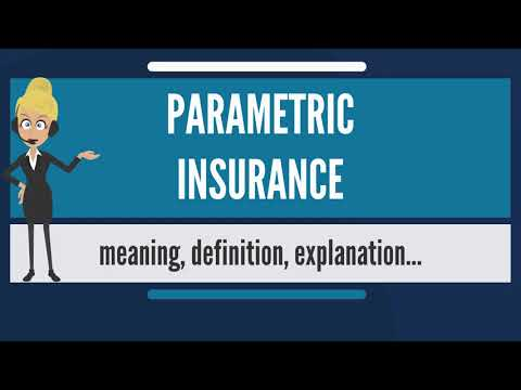 What is PARAMETRIC INSURANCE? What does PARAMETRIC INSURANCE mean? PARAMETRIC INSURANCE meaning