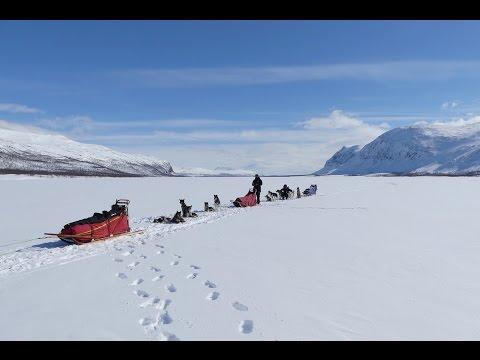 Arctic voyage 4K