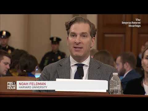 WATCH: Noah Feldman on why framers were 'specifically worried' about presidential abuses of power