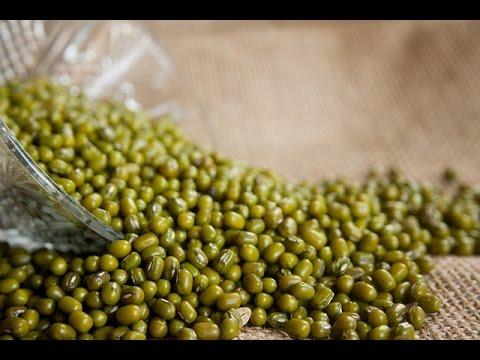 Mung Beans Farming (मूंग की खेती) - In Baatein Kheti Ki - On Green TV