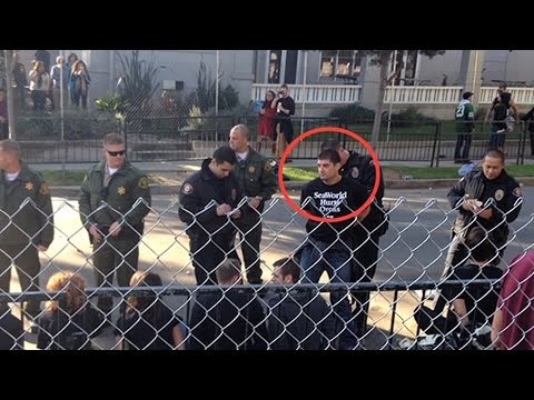 """PETA: SeaWorld Employee Infiltrated Animal Rights Group, Called for Grabbing """"Pitchforks & Torches"""""""