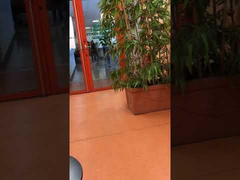 France hospital video