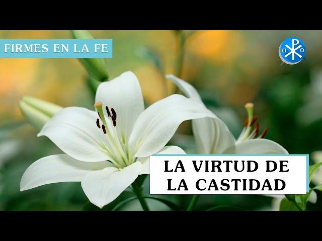 La Virtud de la castidad | Firmes en la fe - P Gabriel Zapata