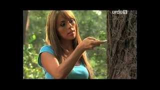 Meri Akhri Mohabbat Ho Tum Title Song - OST Urdu1 Drama