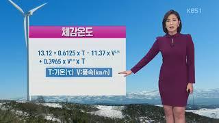 [날씨와 생활정보] 맹추위에 기온 뚝…'체감온도' 왜 다를까? thumbnail