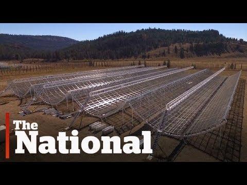 New radio telescope unveiled in B.C.
