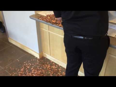 Paying A $400 Traffic Ticket With Pennies