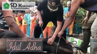 Download Video Idul Adha SD khadijah 2018 MP3 3GP MP4