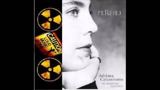 Adriana Calcanhotto Perfil Completo