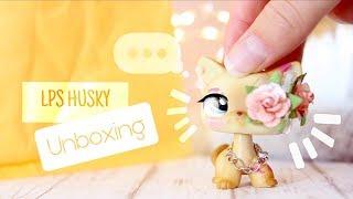 Unboxing a LPS Husky Lot (+ shoutout!) || ✧ Starlit LPS