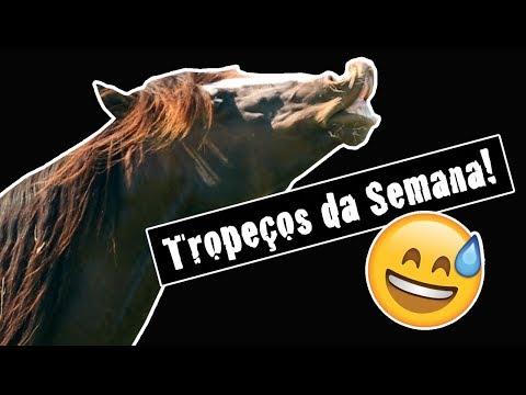 TROPEÇOS Da SEMANA - 25/11/2018