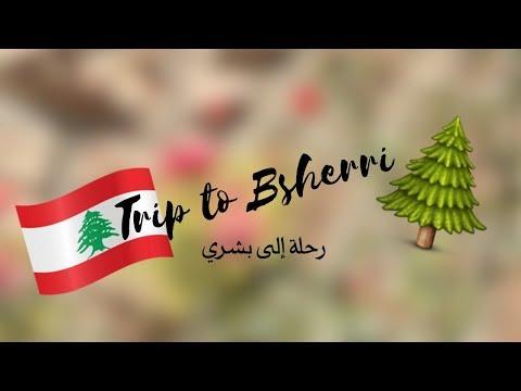السياحة في لبنان: بشري وغابة أرز الرب Bsharri, Lebanon Travel🌲🇱🇧