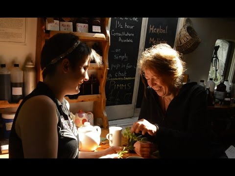 What's Happening Aboard  The Herbal Barge Stormvogel? With melissa ronaldson