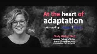 Visible Body Webinars | Comparative Physiology of the Heart by Dr. Cindy Harley