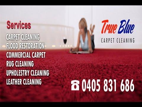 True Blue Carpet Cleaning