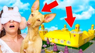 My DOG DECIDES What Mansion I Build In Bloxburg! (Roblox)