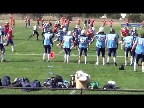 American Football (gridiron) Intercept