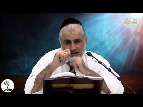 הרב חיים דרשן  - מרכז רוחני פסגות  - הלכות ט' באב המשך  HD