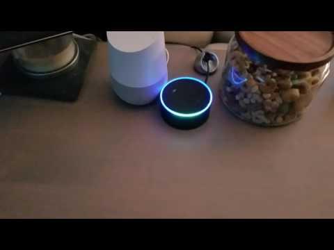 Echo/Google Home infinite loop