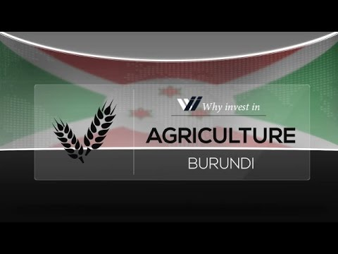Agriculture  Burundi - Why invest in 2015