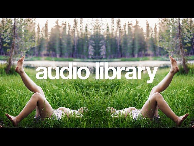 Chill — LiQWYD [Vlog No Copyright Music]