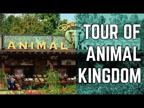 Animal Kingdom - Complete walking tour of entire park | 07/09/2017